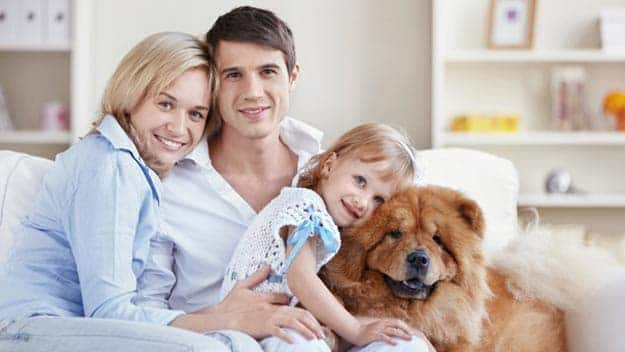 Wills & Trusts dog-young-family Direct Wills Weston Super Mare
